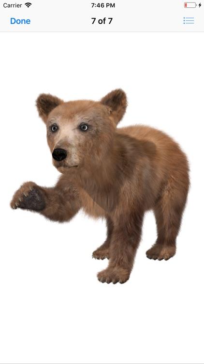 Bear Stickers screenshot-8