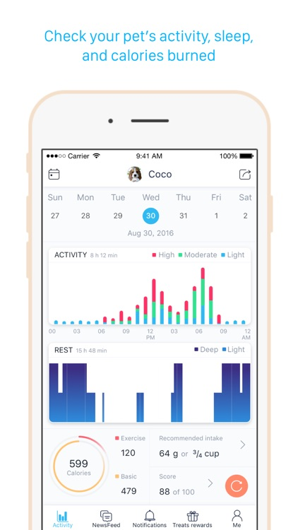 Poof - Activity monitor and tracker for pets