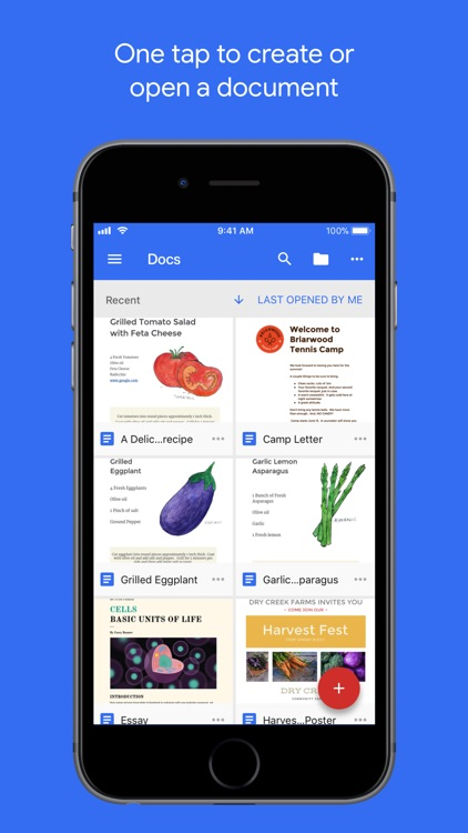 Google Docs screenshot-0