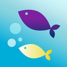 Sensory Friendly Shedd Aquarium
