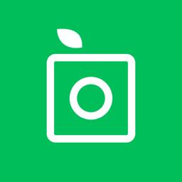 Ícone do app PlantSnap Identificador Planta