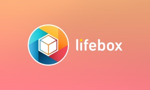 lifebox-Ultimate storage place