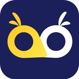 OWL VPN - Secure Proxy Master