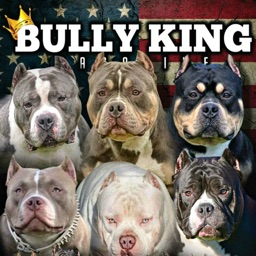 BULLY KING Magazine