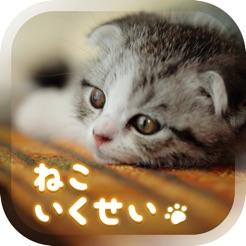 癒しの猫育成ゲーム3D 4+