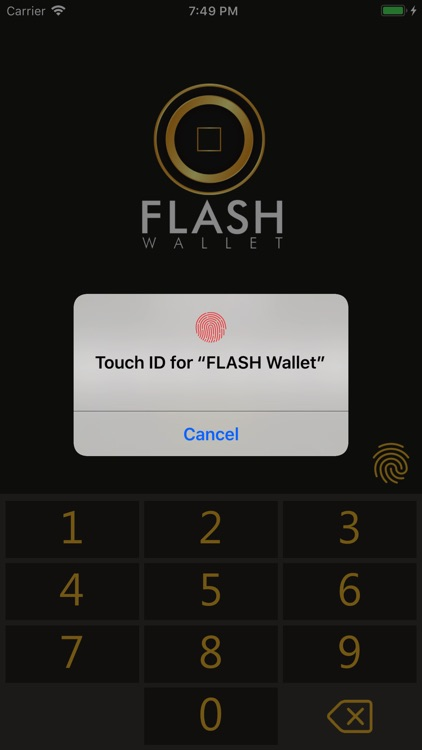 Coinodes FLASH Wallet screenshot-5