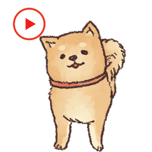 Shiba Dog Animated Stickers app