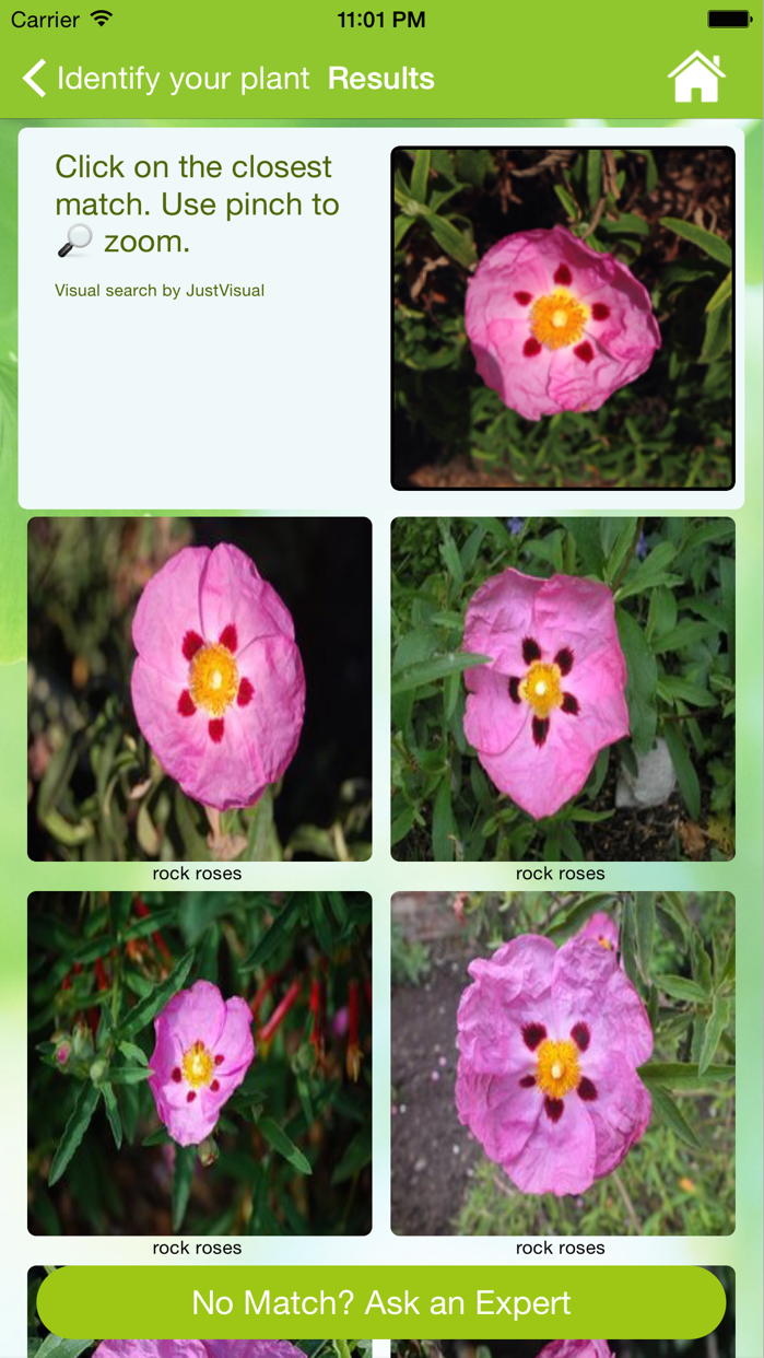 Garden Answers Plant Id Screenshot