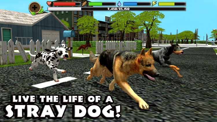 Stray Dog Simulator screenshot-0