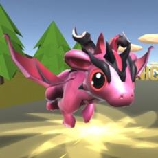 Activities of Dragon Sky