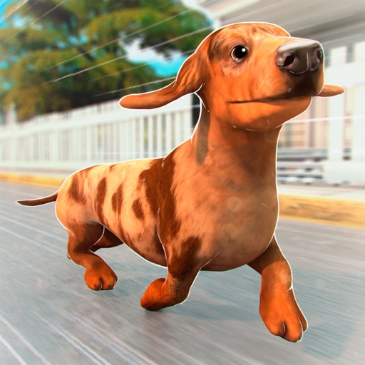 My Pet Escape: Rescue the Dog! iOS App