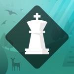 Hack Magnus Trainer - Train Chess