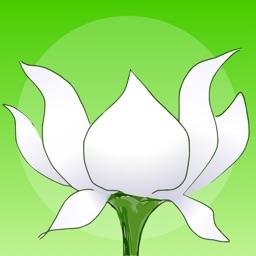 Lotus Bud Mindfulness Bell