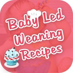 Baby Led Weaning Recipe