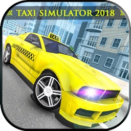 New York City Taxi Driver 2018