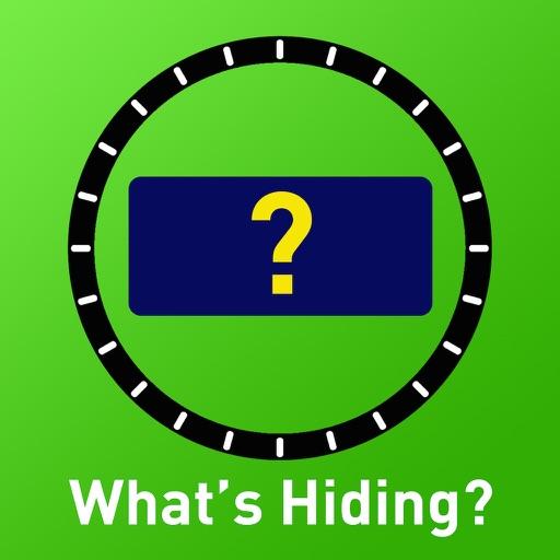 What's Hiding?