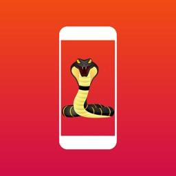 Snake on Screen Prank