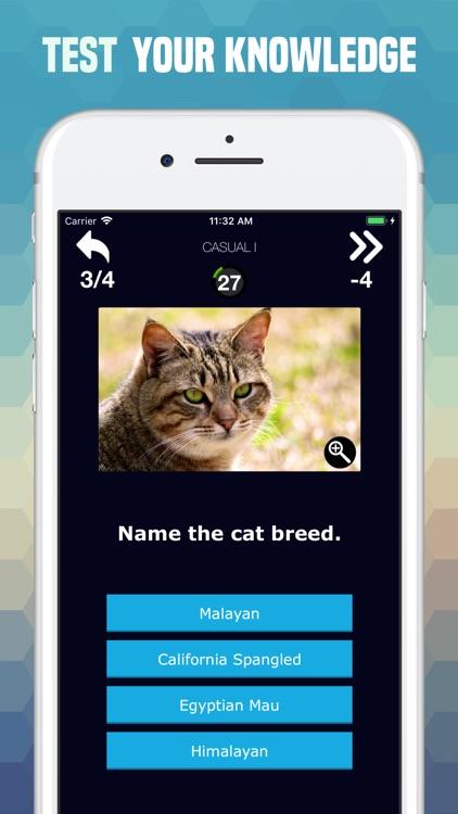 Cats Trivia - Cute Images Quiz