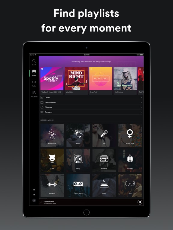 Image of Spotify Music for iPad