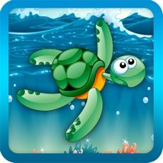 Activities of Flappy Turtle - Ocean Jump!