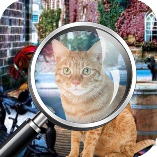 Hidden objects Missing Lulu