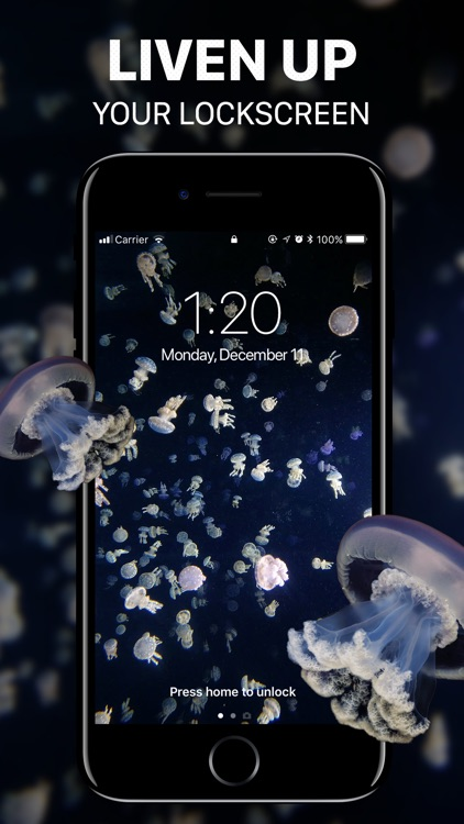 Live Wallpaper⁺ screenshot-2