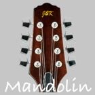 Mandolino Sintonizzatore Pro icon