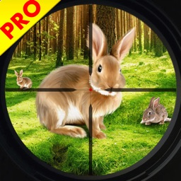 Wild Rabbit Hunting Simulator