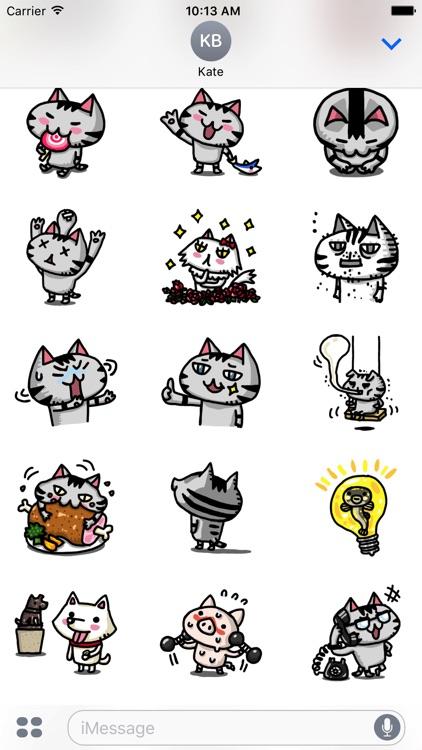 Crummy the cutie cat