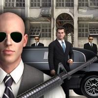 Vip Security Simulator