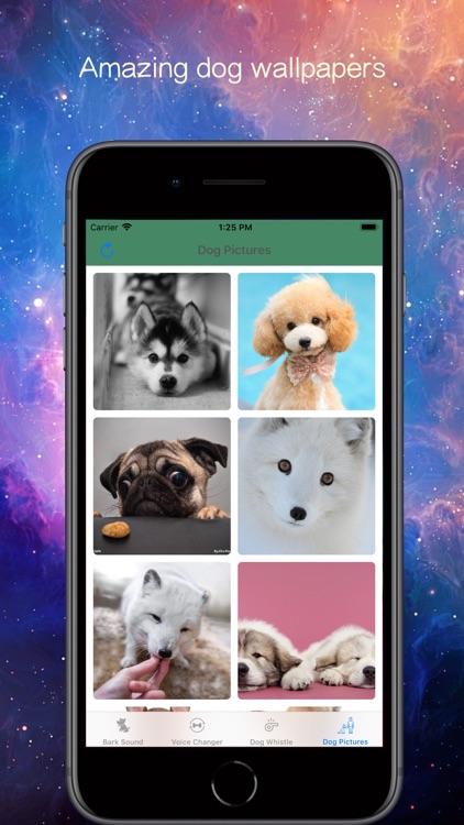 Bark Voice Changer screenshot-3