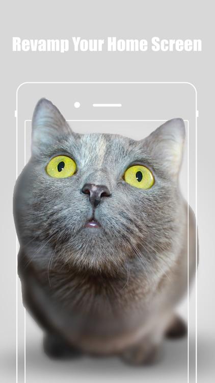 iWallpaper 3D screenshot-3