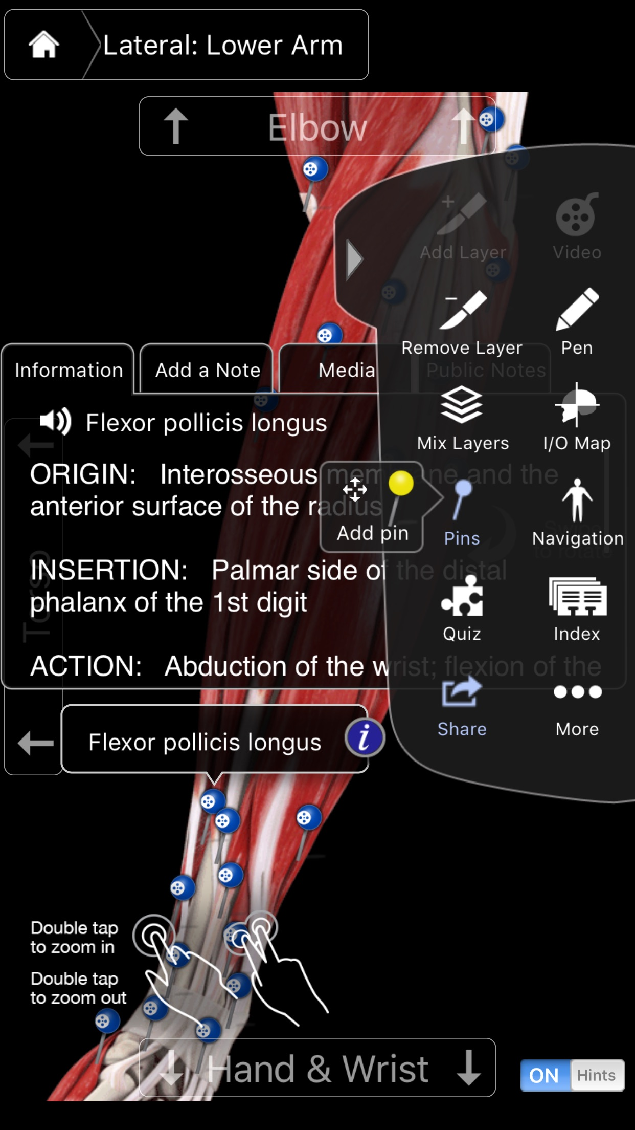 Muscle System Pro III - iPhone Screenshot