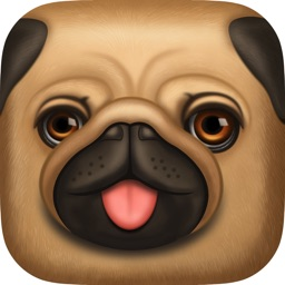 Pug Chalk Sticker Photo Editor