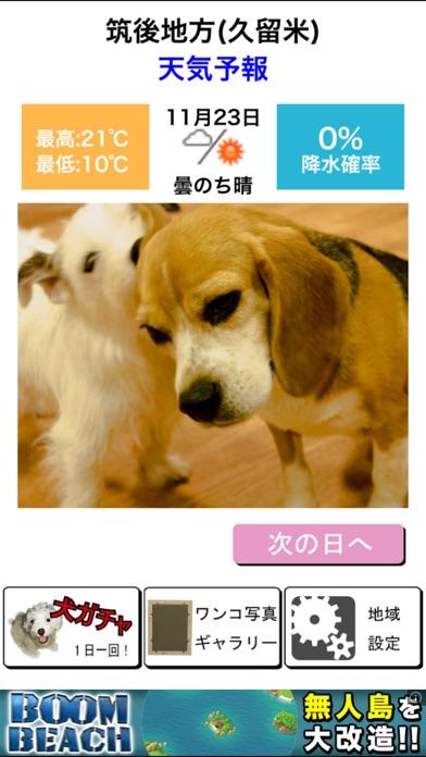 わんこ天気〜天気予報&可愛い犬の写真〜スクリーンショット1