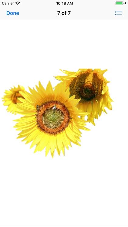 Sunflower Stickers screenshot-7