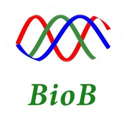 Bio Bump - Couple Matching