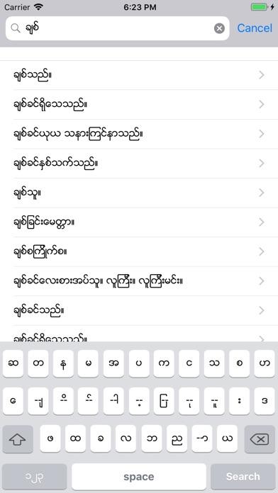 mm-ch Dict screenshot1
