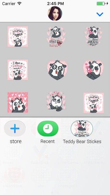 Teddy Bear : Animated Stickers screenshot-3