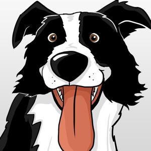 CollieMoji - Border Collie Emojis & Dog Stickers app
