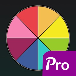 Wheel of What? Pro