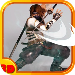 Kungfu Ninja Fighting