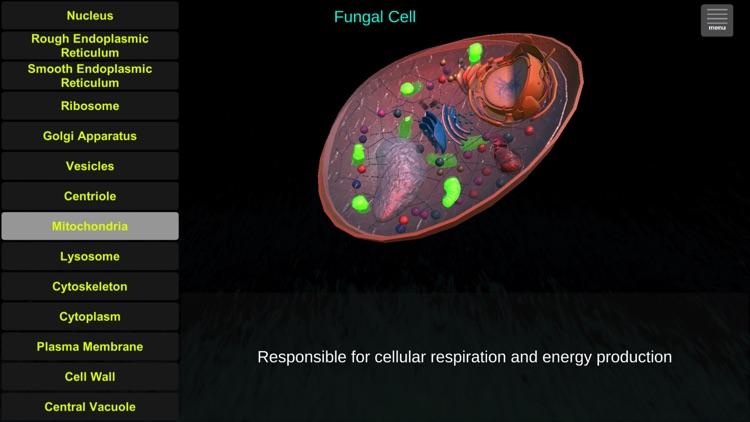 Cell Biology Tutor AR screenshot-4