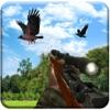 乌鸦 狩猎 冒险