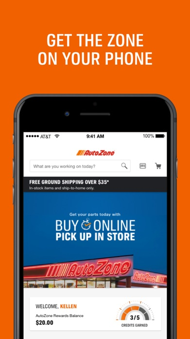 AutoZone Screenshot