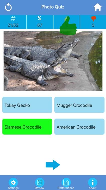 Animals : Reptiles Quiz