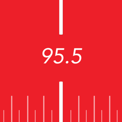 Del Plata FM - 95.5