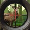Deer Hunt:Sniper Hunter 2018