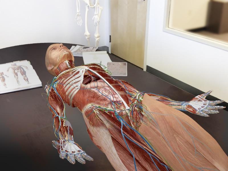 2017版人体解剖学图谱截图4