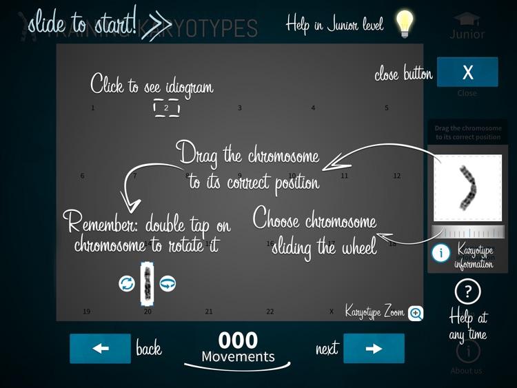 Training Karyotypes Lite screenshot-4